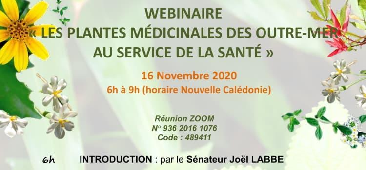 Webinaire : les Plantes Médicinales des Outre-mer au Service de la Santé